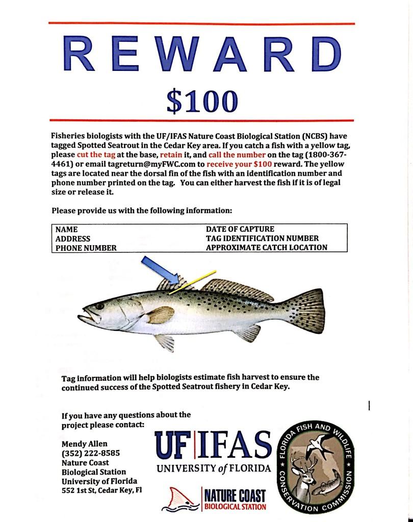 trout-reward