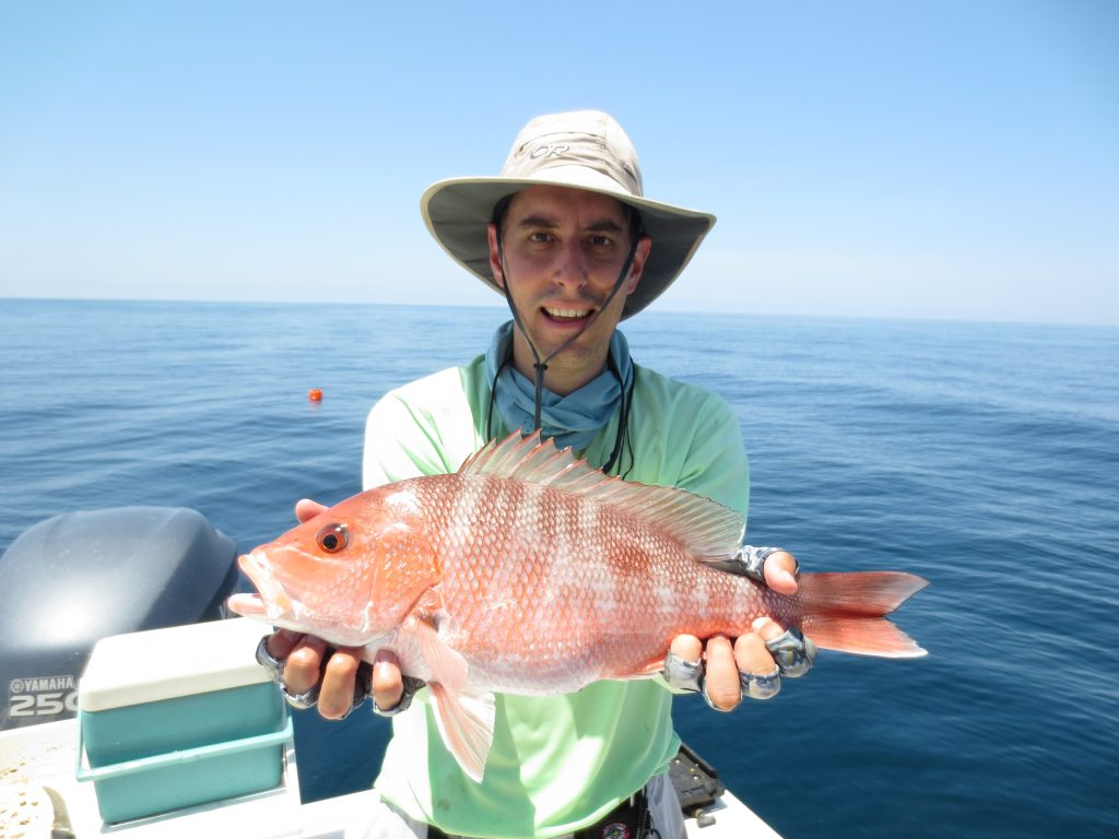 The snapper were hungry!